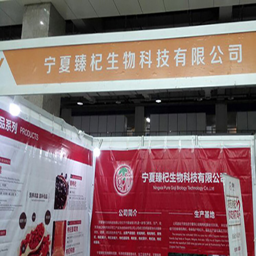 Salon de l'innovation Ningxia Goji 2016